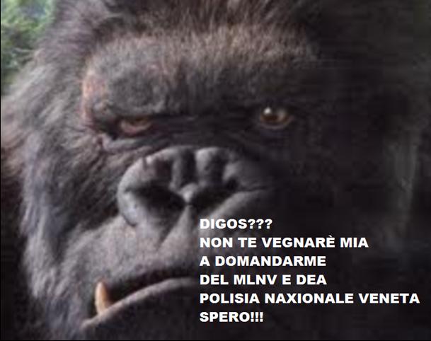 orangooo